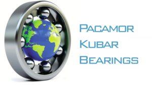 alt pkb logo